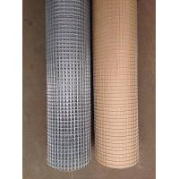 China China manufacture hot dipped galvanized welded wire mesh on sale