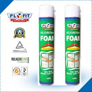 China Adhesive Sealant REACH 30kPa 750ml PU Foam Spray wholesale
