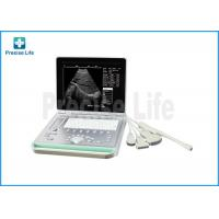 China Portable Animal Laptop Ultrasound Scanner With 15 Inch LCD Screen wholesale