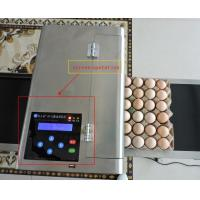 China Reliable Performance Multifunctional Egg Marking Equipment , Eggs Inkjet Printer Industry wholesale