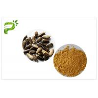 Buy cheap Light Yellow Plant Extract Powder Natural Ingredient Milk Thistle Extraction from wholesalers