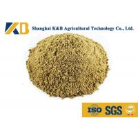 Full Fat Organic Fish Meal Fertilizer / Food Grade Fish Meal Enhance Poultry Nutrition