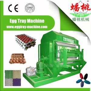 China egg tray/bottle tray/fruit tray/machine for egg tray on sale