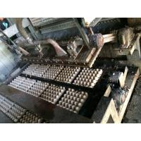 Easy To Operate Paper Pulp Molding Machine , Apple Tray Making Machine