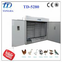 China TD-5280 full automatic egg incubator the equipment for business wholesale
