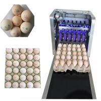 China Easy To Maintain Egg Continuous Inkjet Printer For Expiration / Expiry Date wholesale