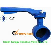 China Small Grooved End Double Eccentric Butterfly Valve Metal Seated 2 - 14 For Water on sale