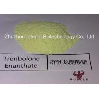 China 99.48% Purity Tren Anabolic Steroid Trenbolone Enanthate/Parabolan for Muscle Gain Fitness wholesale
