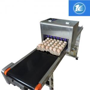 China Custom Length Egg Printing Machine With 45ml High Capacity Ink Cartridges wholesale