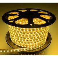 China LED Christmas light LED light strip waterproof IP65 and indoor used wholesale