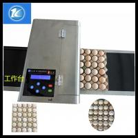 China Quality Assure Best Quality Egg Inkjet Printer / Blue Ink Printing Machine / Red Edible Ink Printing Equipment wholesale
