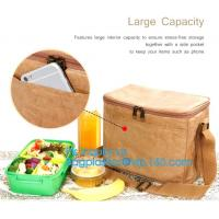 China Custom Eco friendly tyvek Lunch bag Insulated Cooler bag,tyvek kraft paper insulated aluminum foil lunch box bag with sn on sale