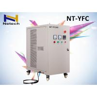 China 5g Air Cooling Ozone Generator Water Purification High Concentration 1 Year Warranty wholesale