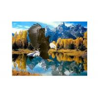 China High Definition 3D Lenticular Pictures Stock PET Pictures Offset Printing wholesale