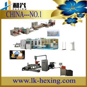 China Disposable Foam Tray Machine wholesale