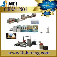 China PS Food Container Extrusion Line wholesale