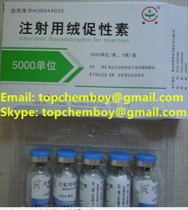 China 99% purity HCG 5000iu/vail bodybuilding fat-burning fat-cut fat lose CAS NO.9002-61-3 wholesale