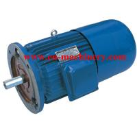 China Engine Motor three phase Super High Efficiency AC DC Electric Motor on sale