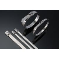 China Heavy Duty Stainless Steel Cable Ties Self Locking 10 Inch Zip Ties 50pcs / Pkt wholesale