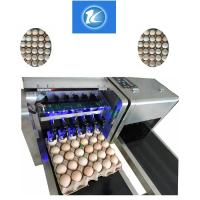China Date / Number Egg Batch Coding Machine With 0 - 5mm Printing Distance wholesale