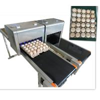 China High Output Egg Batch Code Stamping Machine With Low Maintenance Costs wholesale