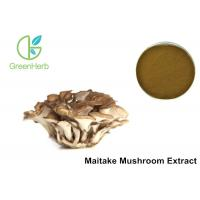 China 30% Polysaccharides Maitake Mushroom Extract Powder Grifola Frondosa on sale