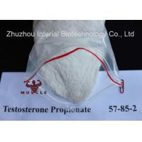 China Anabolic Strongest Testosterone Steroid Propionate CAS 57-85-2 for Bodybuilding wholesale