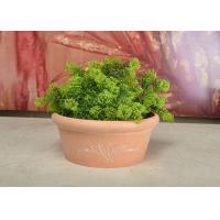China Plastic Small Tabletop Herb Planter , Decorative Round Flower Pots For Plants wholesale