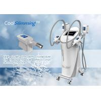 China FDA Approved Fat Freezing Machine To Lose Weight 3 In 1 Technology Combined wholesale