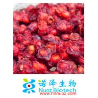 China Nuoz supply Fructus Schisandra Chinensis P.E. in Brown yellow /Schisandra Chinensis Extracts Schisandrol A 9% HPLC on sale