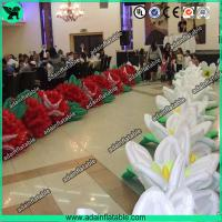 China Birthday Event Inflatable Flower,Birthday Party Inflatable,Inflatable Flower Chain wholesale