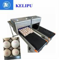 China Egg Industrial Continuous Inkjet Printers Quick Drying For Large Characters wholesale