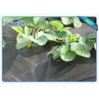 China Seasame Dot PP Lanscape Groud Cover Weed Barrier Fabric Non Woven Biodegradable wholesale