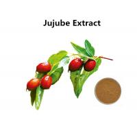 China Jujube Fruit /Chinese Date Extract Plant Polysaccharides Anti - Allergic & Antihypertensive wholesale
