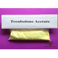 China Most Effective Tren Anabolic Steroid Trenbolone Acetate Powder Hormone For Muscle Building wholesale