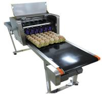 China High Efficiency Egg Date Stamp Machine , Small Date Format Egg Spraying Machine wholesale