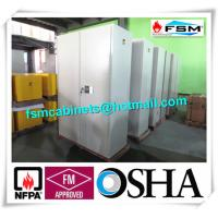 China Metal Fireproof Storage Cabinets With 2 Door For Large File / Documents wholesale