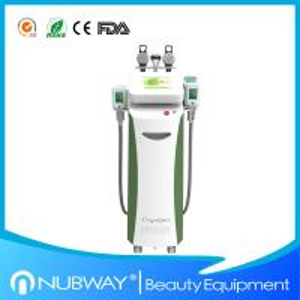 China Multifunction cryolipolysis slimming fat freezing cryolipolysis slimming machine with CE wholesale