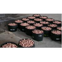 China Copper ball for gravure cylinder wholesale