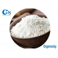 China ISO9000 Pass Organoclay Bentonite Paint Raw Materials White Color Powder on sale