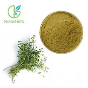 Powder 80 Mesh Thymus Vulgaris Extract Powder Thymus Mongolicus Ronn