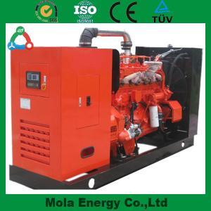 China 20KW green power biogas generators for light wholesale