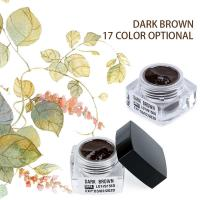 China Stable / Long Lasting Eyebrow Tattoo Microblading Pigment Dark Brown Color wholesale