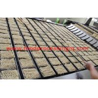 China 80000 bag packing instant noodle production line high quality china manufacturer wholesale