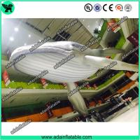 China Giant Inflatable Whale, Event Inflatable Whale,Inflatable Whale Replica wholesale