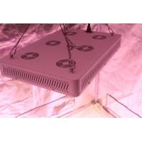 Quality 620 Watt(UV/IR) LED Grow Lamp Lights 3000k Blue And Red 5W Diode , 120V Power for sale