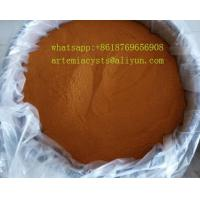 China Best quality brine shrimp eggs wholesale