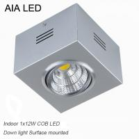 China IP42 Silver indoor surface adjustable COB 12W spot down light&LED Grille light wholesale