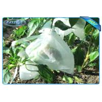 Quality Nonwoven Agiculture Plant Grow Bags For Fruit Growth and Protection , Potato for sale