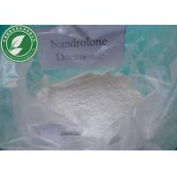 China High Purity Steroid Hormone Nandrolone Decanoate CAS 360-70-3 For Muscle Growth wholesale
